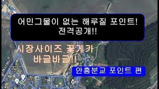 해루질 비공개포인트 전격 공개 3편(안흥분교편) [뭐?…
