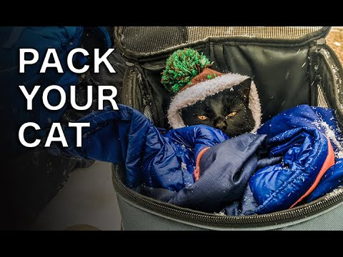 HOW TO Pack for a CAT ADVENTURE