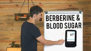 Berberine, Blood Sugar & Ketosis (data from glucose monitor)