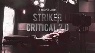 Striker (Y.ACG) - Critical 2.0
