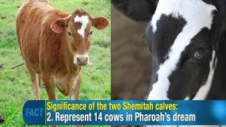 Jonathan Cahn: 2 times 7 Cows appeared in America like in Pharaoh