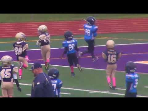 Elmont Panthers 7 and 8's 2016 football highlights