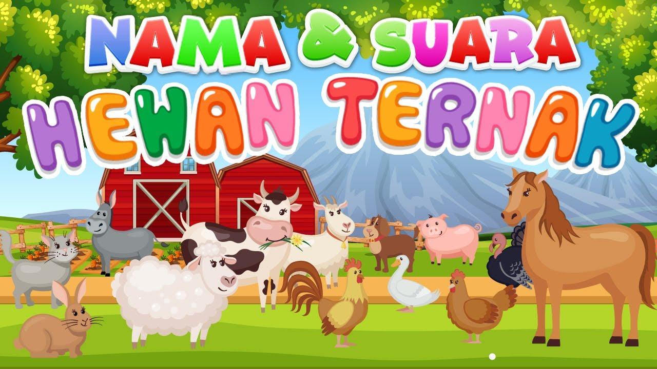 Download Belajar mengenal nama dan suara hewan | Hewan Ternak