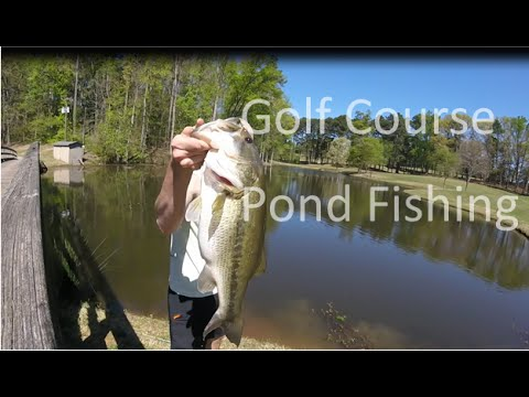 Golf Course Pond Fishing | Georgia Outdoors