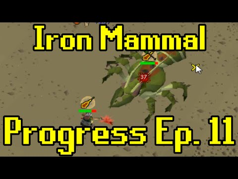 Oldschool Runescape - 2007 Iron Man Progress Ep. 11 | Iron Mammal