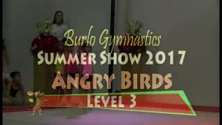 Burlo Gymnastics, Summer Show 2017, Angry Birds, Level 3