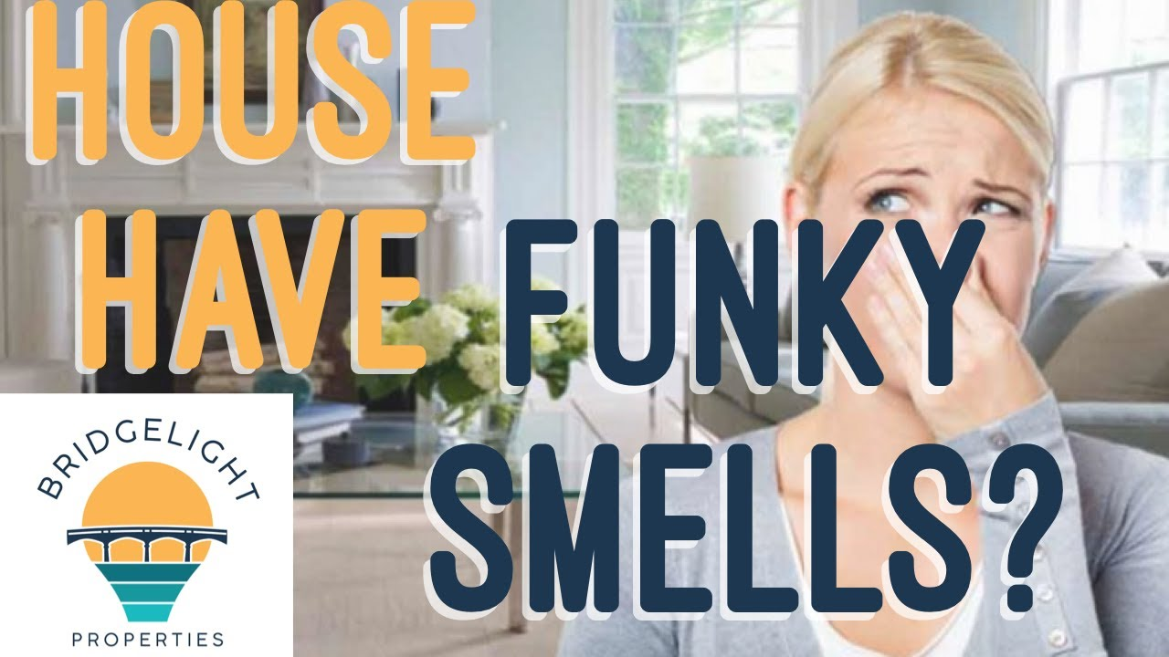 How To Sell A Hamilton House That Stinks! - Bridgelight Properties