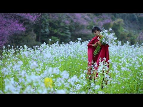 陸綜-李子柒 Liziqi -EP 004-不能去人多的地方扎堆儿,趕在上巳節這天家門口春個遊!