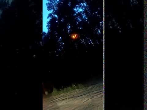видео: Молния попала в дерево