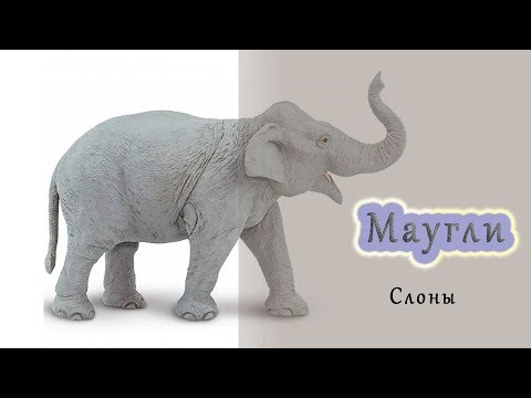 Песня слонов из книги джунглей