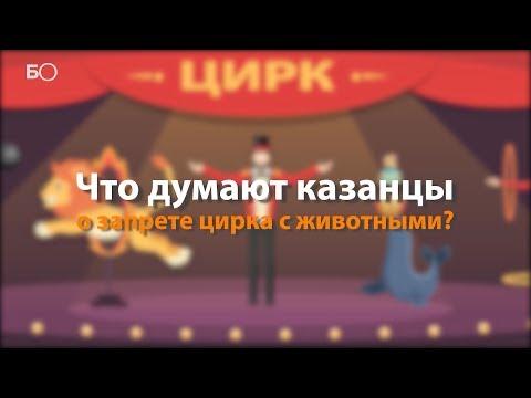 Вопрос: Как официально в России запретить цирк с животными?