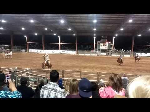 Bucking horse rodeo female cowgirl