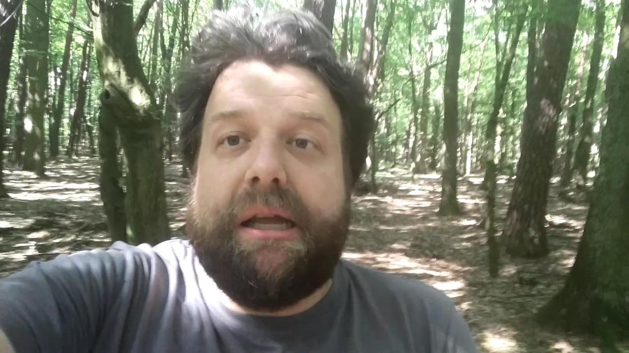 Antifa. Miesiecznica Smolenska. Holdys i Demolka – Przemyslenia z Lasu