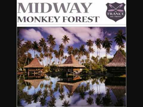 Music video MIDWAY - Monkey forest