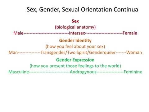 Introduction to Gender Identity