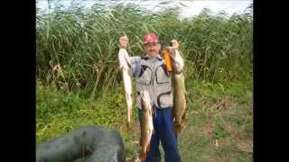 рыбалка на лимане -краснодарский край(, 2015-08-03T10:02:55.000Z)