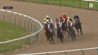 Vidéo de la course PMU PRIX DE LA ROUTE DES PINS