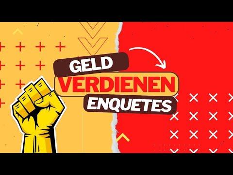 Hoe Kun je Online Geld Verdienen met Enquetes (in Nederland)?