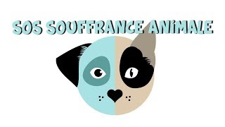 SOS SOUFFRANCE ANIMALE (Documentaire)