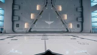 Star Citizen Alpha 2.4 Revel and York Hangar Tour.  Flair, Collectibles, and Ships