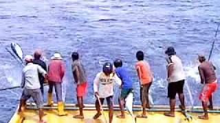 Hirilandhoo RIVELI - tuna fishing 2
