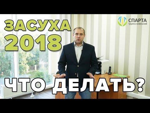 ЗАСУХА 2018 Что