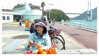 2015日本四國櫻花季的島波海道單車之旅輕音樂版