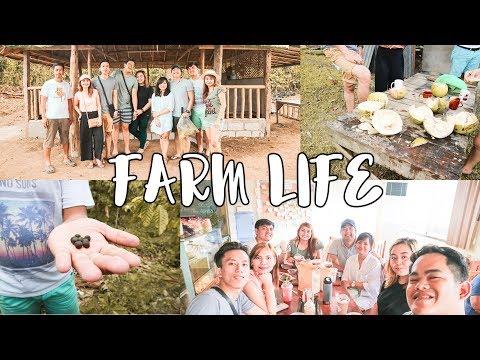 12 | Farm Hopping sa Amadeo Cavite Vlog 2017 | Farm Life | airisaalmocera