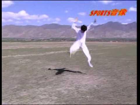San Lu Mizong Quan (Lost Track Fist Third Line)