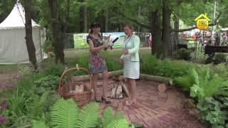 Декоративный сад и подбор растений. Идеи для ландшафтного дизайна // FORUMHOUSE(, 2014-07-18T12:37:34.000Z)