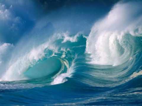 Tout au fond des océans