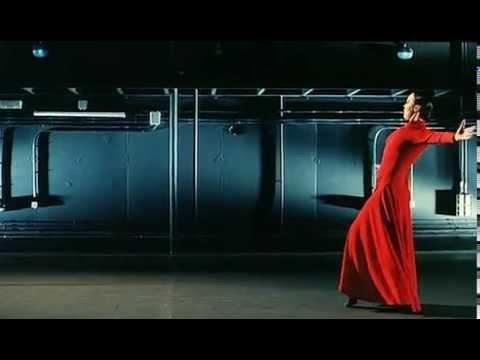 Danza flamenca, la flor de mi secreto