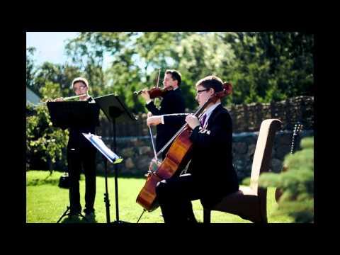 Trio Comodo - Pachelbel´s Canon in D