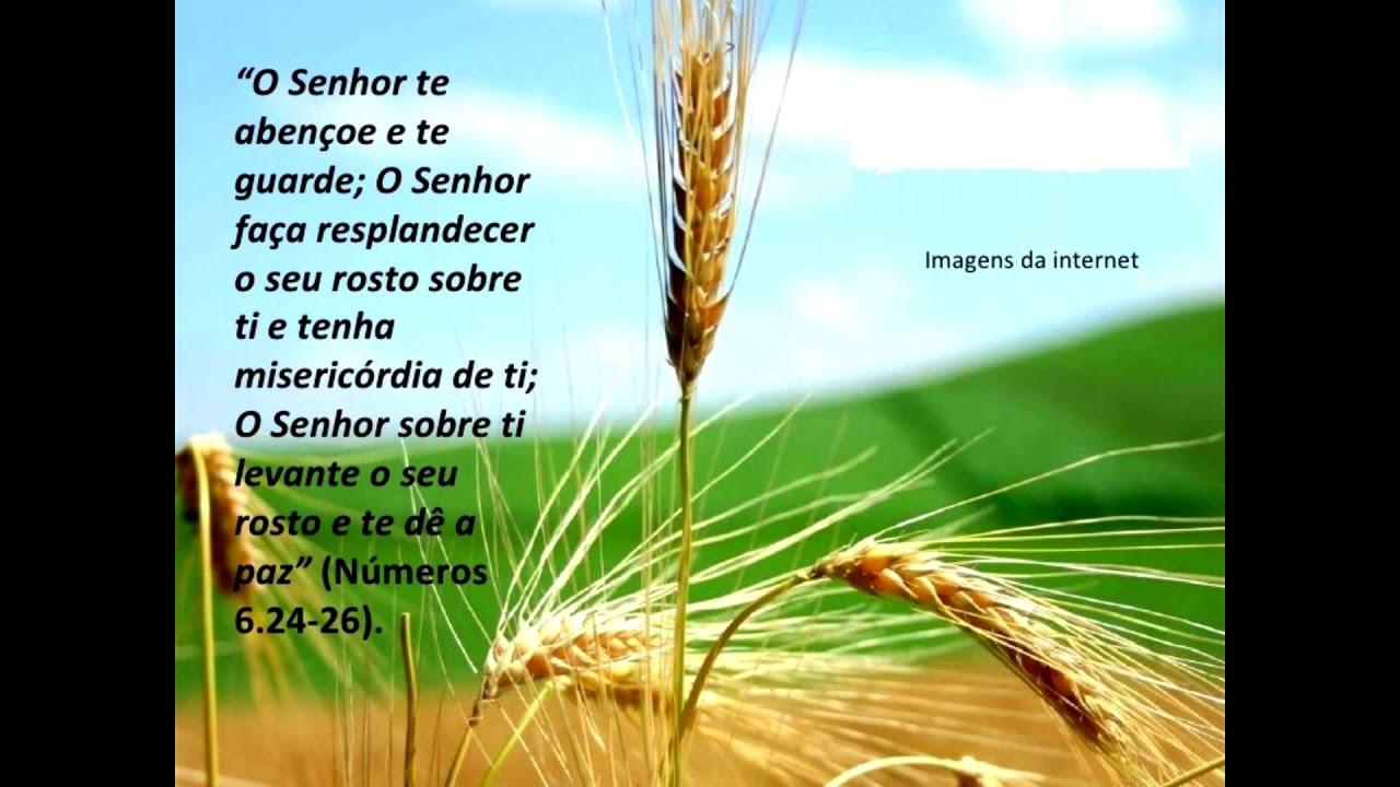 Deus O Abencoe: O Senhor Te Abençoe E Te Guarde!
