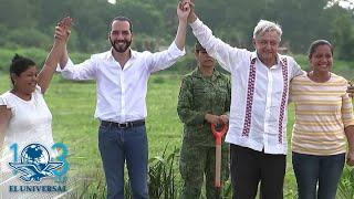 AMLO golpea por accidente a presidente de El Salvador