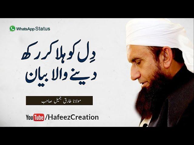 Molana Tariq Jameel Emotional WhatsApp Status Bayan | Hafeez Creation