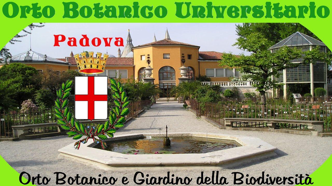 L orto botanico di padova orto e giardino biodiversità youtube