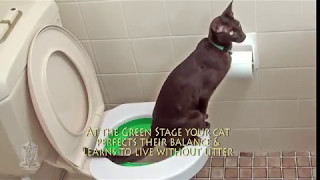 Cat Toilet Training System FINAL