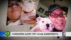 Consumer alert: Pet lease agreements