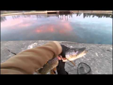 Kingston Mills, Fall Pike fishing