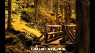 Gracias a la Vida - Juanes, Alejandro Sanz, Laura Pausini, Shakira, Michael Bublé & Miguel Bosé
