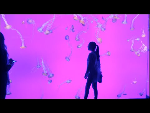Ripley's Aquarium + Unboxing Lighting Set !!!!