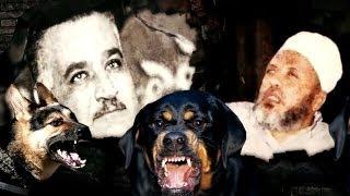 الشيخ كشك : جمال عبد الناصر استورد لنا كلاب لتمارس الجنس معنا في السجن الحربي