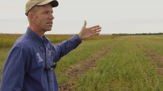 The Science of Soil Health: Dynamic Cropping Systems