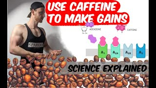 Caffeine and Building Muscle | The Truth about coffee | Whiteboard Wednesday