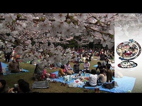 Why Estranged Spouses Take Kids To Japan