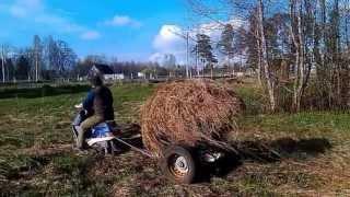 Мульча - где её взять весной