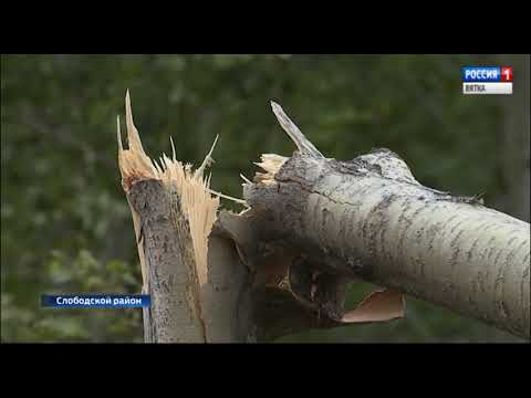 В Слободском районе подсчитывают ущерб от разрушительного смерча(ГТРК Вятка)