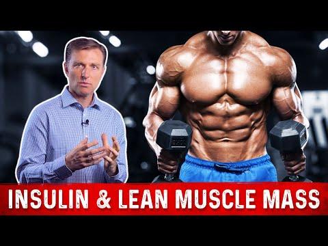 Insulin & Lean Muscle Mass