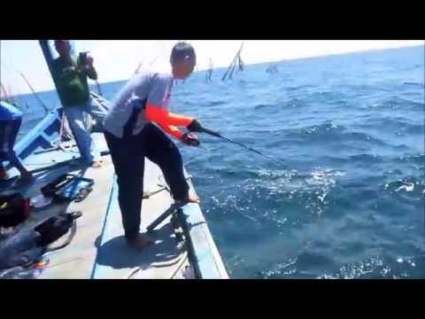 Big Catch - Tenggiri 12 kg (for 3 fish) at Tuas Kuala Dulang, Yan 2015
